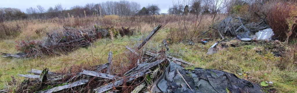 Winter habitat surveys for reptiles can identify suitable habitat areas such as this fly-tipped waste.